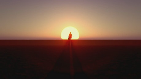 Businessman standing in front of the sunset