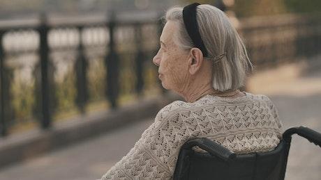 Calm elderly woman in wheelchair in a park