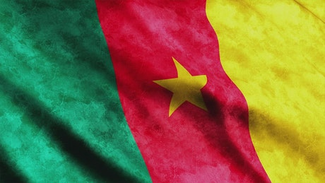 Cameroon waving flag, animation