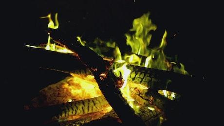 Campfire at night close up