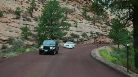 Cars driving through Zion National Park