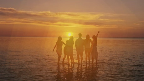 Cheerful friends seeing the sunset on the beach
