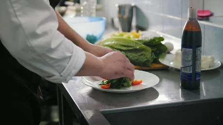 Chef preparing salad in the restaurant kitchen