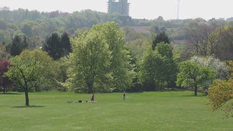 Children playing in the park, seen from afar