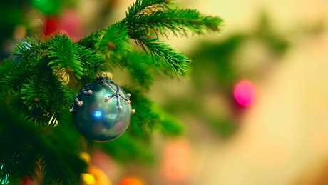 Christmas sphere hanging in the tree