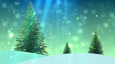 Christmas tree, title background render