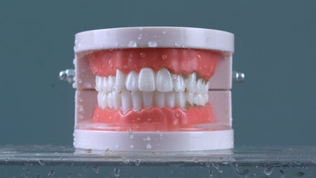 Cleaning fake teeth with dentist irrigator
