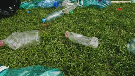 Cleaning the park grass from plastic waste