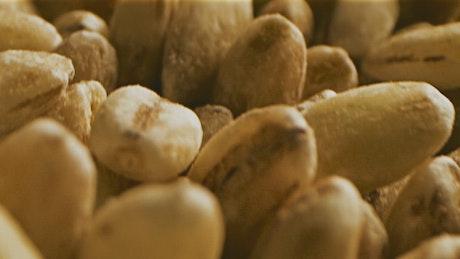 Close shot of harvested grain