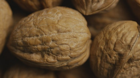 Close up of walnuts on their shells