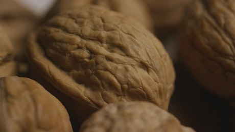 Close-up shot of walnuts in the shell