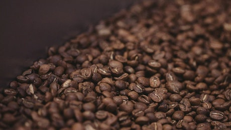 Closeup of coffee beans in a coffee roaster