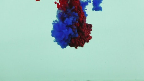 Clouds of red and blue ink underwater