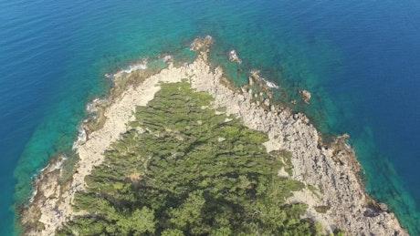 Coastline with vegetation and a blue lake