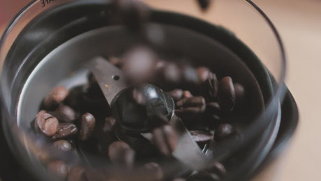 Coffee beans falling into a coffee pot