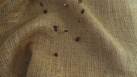Coffee beans filling a sack, top view