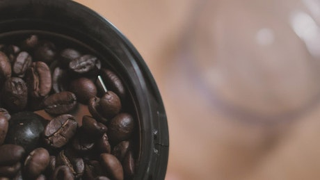 Coffee beans in a home coffee maker
