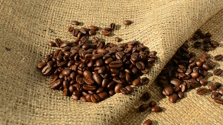 Coffee beans on a sack