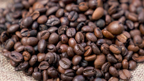 Coffee beans rotating