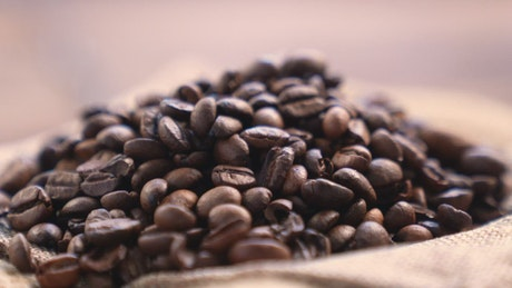 Coffee beans rotating, close up shot