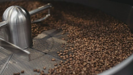 Coffee roaster in operation