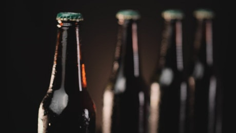 Cold beer bottles in a row on a dark background