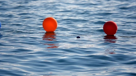 Colored balloons on the sea