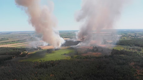 Columns of smoke in a forest, aerial shot