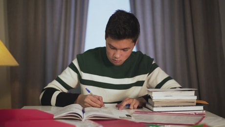 Concentrated boy studying at home