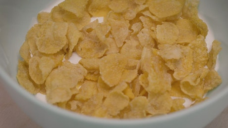 Corn flake cereal in a bowl with milk