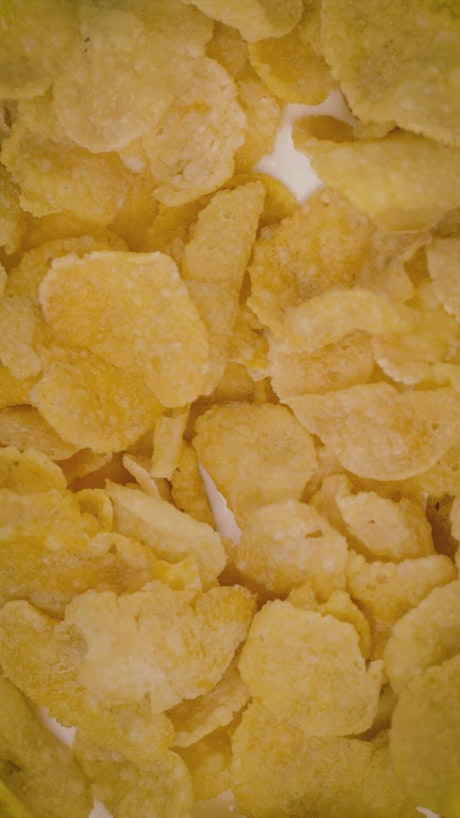 Corn flakes cereal texture with milk