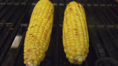 Corn grilled on a BBQ