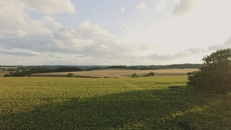 Countryside sunshine