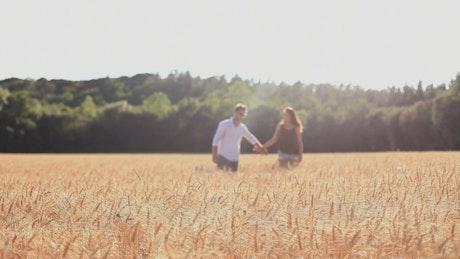 Couple in love in a wheat field