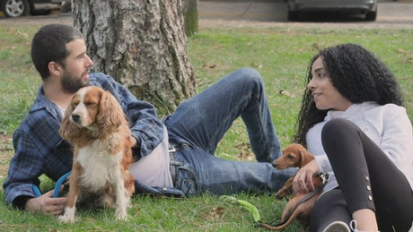 Couple lying down in a park resting with their pets