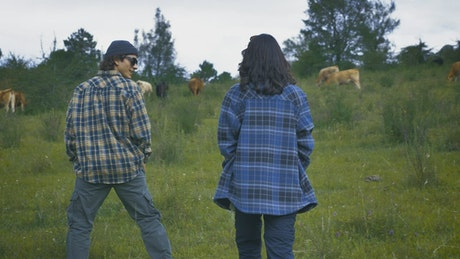 Couple walking through a meadow among many cows
