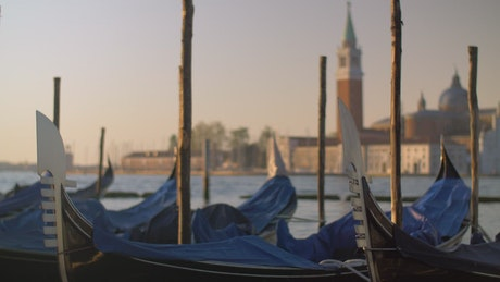 Covered boats in Venice