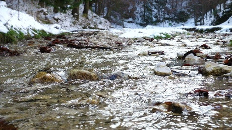 Creek in a snowy forest in slow motion