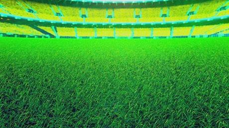 Cricket court in a stadium
