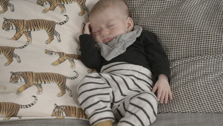 Cute baby sleeping on a couch