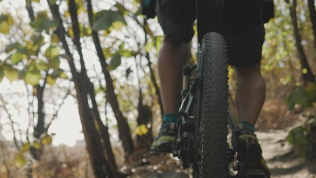 Cyclist traveling through a forest seen from the back wheel