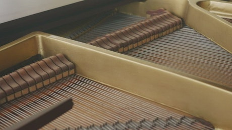 Dampers moving inside a grand piano