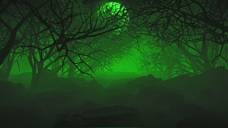 Dark forest under the moon and a green haze