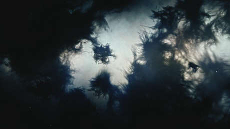 Dark matter texture floating in space