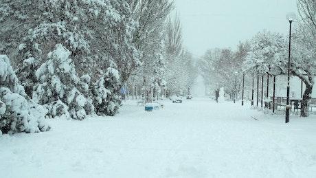Deep snow through a tourist town
