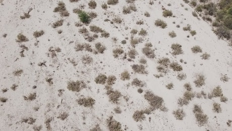 Desert sands from above
