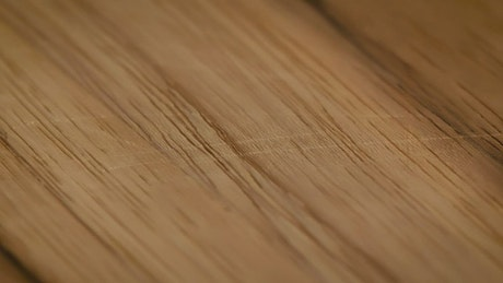 Detailed tour of the surface of a wooden board