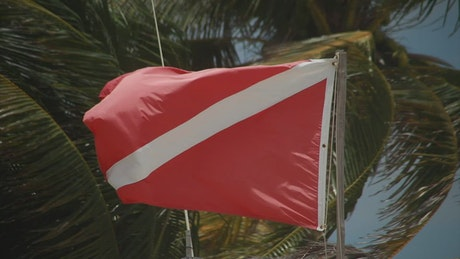 Diver flag blowing in the wind