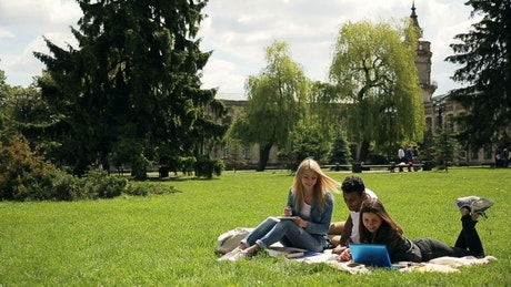 Diverse unversity students study on grass