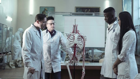 Doctor students in the classroom